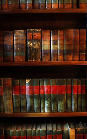 Morrison Raven-Hill Bookshelf